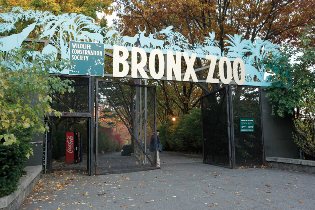 Wild Life Conservatory at the Bronx Zoo