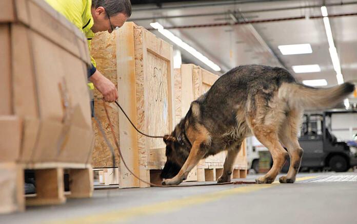 Lufthansa Sniffer Dog